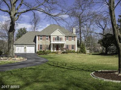 Severna Park Single Family Home For Sale: 225 Winter Crest Lane
