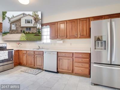 Annapolis Single Family Home For Sale: 1613 Virginia Street
