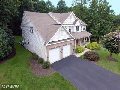 Edgewater Single Family Home For Sale: 3762 Colliers Drive