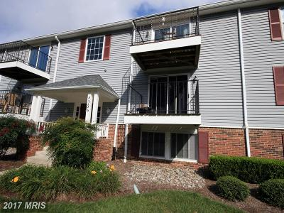 Anne Arundel Condo For Sale: 8036 Abbey Court #B