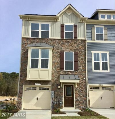 Anne Arundel Townhouse For Sale: 733 Ravenwood Drive