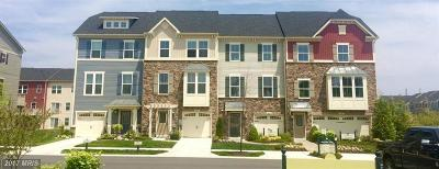 Anne Arundel Townhouse For Sale: 727 Ravenwood Drive