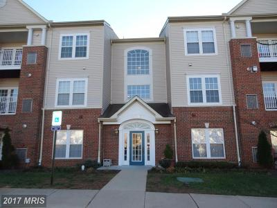 Piney Orchard, Chapel Grove Rental For Rent: 2496 Amber Orchard Court E #201