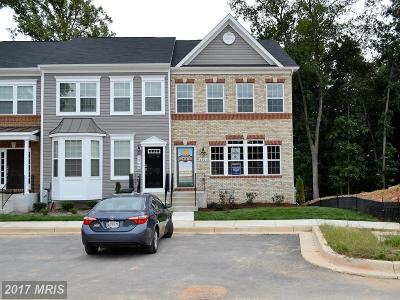 Anne Arundel Townhouse For Sale: Homesite 13 Hawthorn Drive
