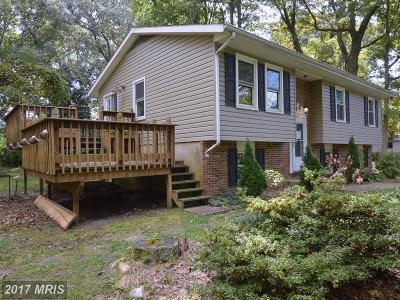 Pasadena Single Family Home For Sale: 259 4th Street