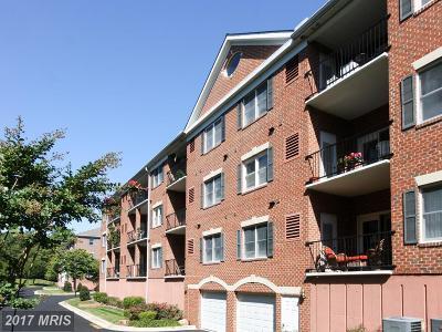 Annapolis Condo For Sale: 803 Coxswain Way #110
