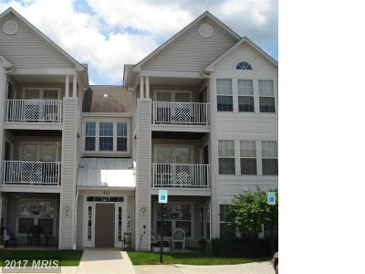 Piney Orchard, Chapel Grove Rental For Rent: 2443 Blue Spring Court #103