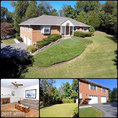 Davidsonville Single Family Home For Sale: 1054 Ashe Street