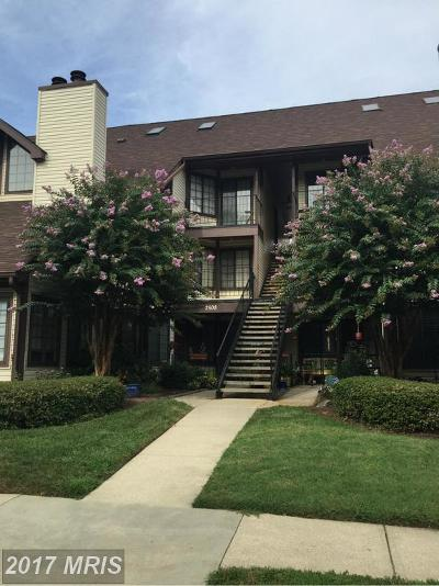 Crofton Rental For Rent: 2508 Airy Hill Circle #5C