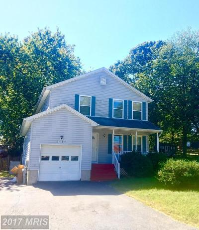 Edgewater, Mayo Single Family Home For Sale: 3485 River Terrace