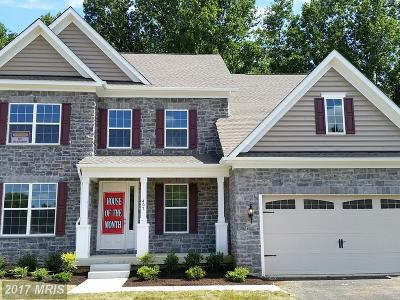 Annapolis Single Family Home For Sale: 418 Ashers Farm Road