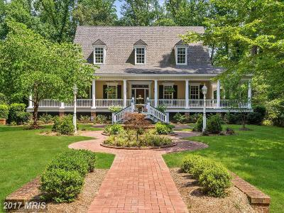 Annapolis Single Family Home For Sale: 407 Beards Dock Crossing