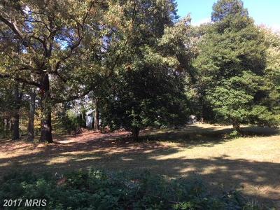 Severna Park Single Family Home For Sale: 415 Light Street Avenue