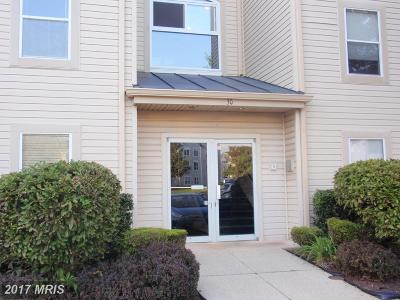 Annapolis MD Rental For Rent: $1,550