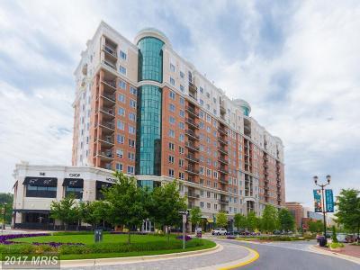 Annapolis MD Condo For Sale: $499,900