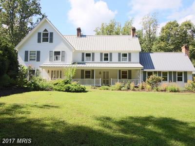 Anne Arundel Single Family Home For Sale: 220 Leitch Road