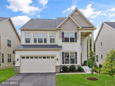 Anne Arundel Single Family Home For Sale: 8105 Ridgely Loop