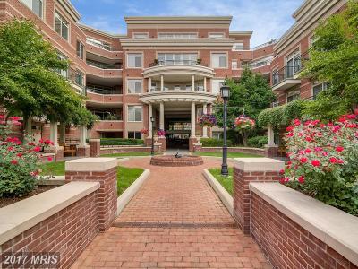 Annapolis Condo For Sale: 66 Franklin Street #103