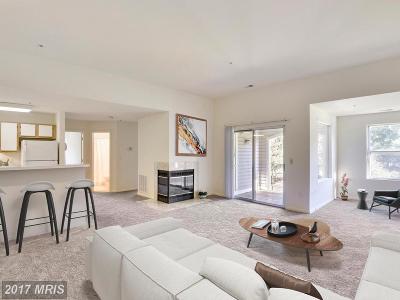 Annapolis Condo For Sale: 20 Greystone Court #J