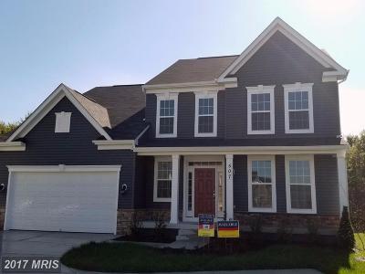Single Family Home For Sale: 507 Pumpkin Lane