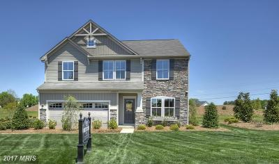 Glen Burnie Single Family Home For Sale: 807 Boxwood Drive