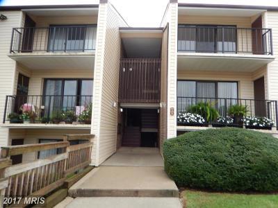 Annapolis Condo For Sale: 2572 Riva Road #3B