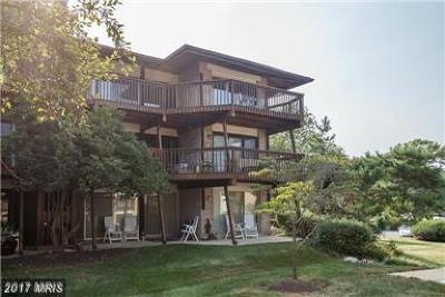 Annapolis Condo For Sale: 793 Fairview Avenue #E