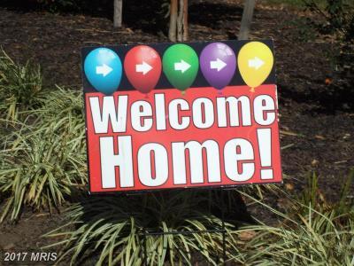 Pasadena Single Family Home For Sale: 7728 Pine Haven Drive