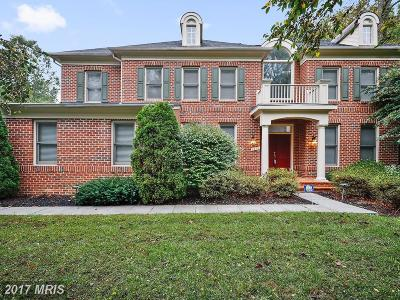 Edgewater Single Family Home For Sale: 3471 Violet Tail Lane