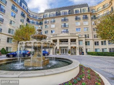 Anne Arundel Condo For Sale: 5 Park Place #610