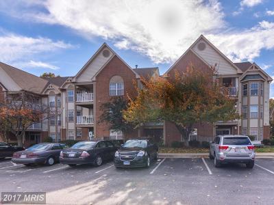 Annapolis Condo For Sale: 613 Admiral Drive #308