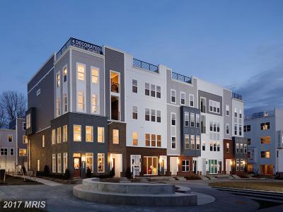 Annapolis Townhouse For Sale: 126 Lejeune Way