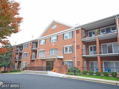 Annapolis Condo For Sale: 803 Coxswain Way #201