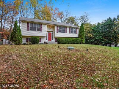 Edgewater, Mayo Single Family Home For Sale: 3615 7th Avenue