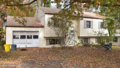 Anne Arundel Single Family Home For Sale: 1309 Shore Drive