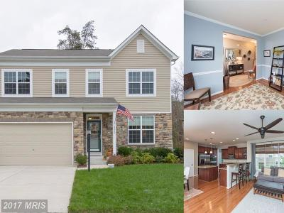 Anne Arundel Single Family Home For Sale: 1213 Bradley Road