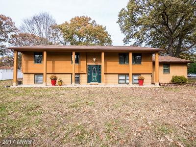 Anne Arundel Single Family Home For Sale: 802 Elmhurst Road