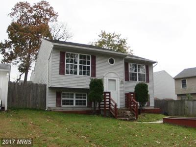 Single Family Home For Sale: 991 10th Street