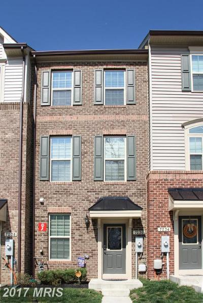 Anne Arundel Townhouse For Sale: 7236 Winding Hills Drive