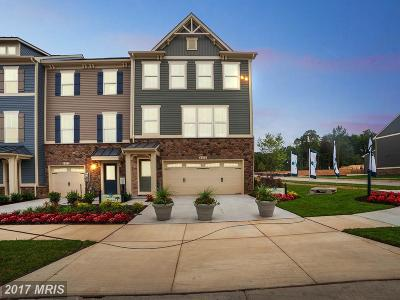Anne Arundel Townhouse For Sale: 8260 Hickory Hollow Drive