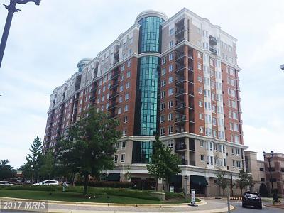 Annapolis Condo For Sale: 1915 Towne Centre Boulevard #812