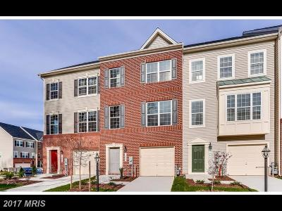 Anne Arundel Townhouse For Sale: 7463 Tanyard Knoll Lane