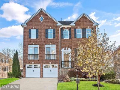 Annapolis Single Family Home For Sale: 223 Bowen Court