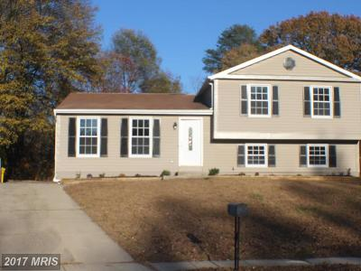 Anne Arundel Single Family Home For Sale: 1472 Holston Court