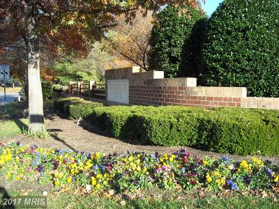 Severna Park Condo For Sale: 602 McKinsey Park Drive #302