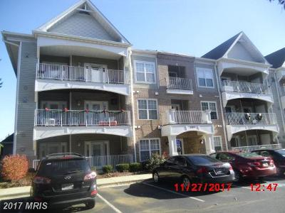 Annapolis Condo For Sale: 2001 Warners Terrace N #103
