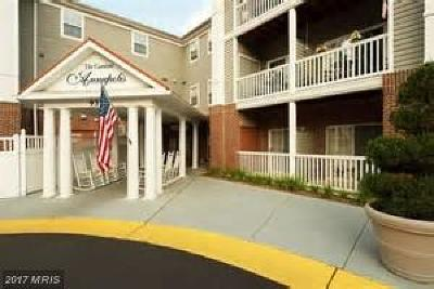 Annapolis MD Rental For Rent: $3,095