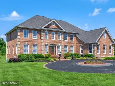 Davidsonville Single Family Home For Sale: 1119 Thomas Swann Lane