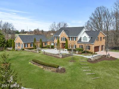 Davidsonville Single Family Home For Sale: 3587 Birdsville Road