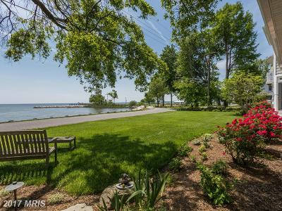 Churchton Single Family Home For Sale: 1268 Chesapeake Drive